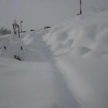 『今年一番の大雪』の画像