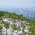 浅草岳(3)