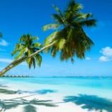 『【衝撃】ハワイが活況しまくってるらしい!!その理由がコレ →』の画像