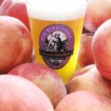 『【数量限定】サンクトガーレン、横浜オクトーバーフェストで1日1000杯完売の「7種の桃のエール」全国のビアバーへ出荷開始。』の画像