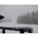 『朝から雪降りです』の画像