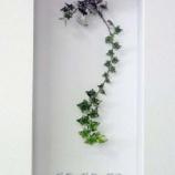 『飾り棚『ニッチ』のある素敵なインテリア【デザイン参考&飾り方】 3/3 【インテリアまとめ・リビング 狭い 】』の画像