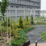 『戸田中央リハビリテーション病院 屋上緑化庭園』の画像