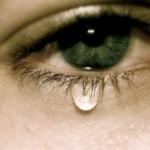 人がいつか死ぬのは当然の事なのに泣く意味がわからない…