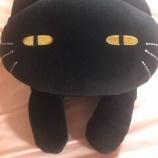『黒猫クッションを買って君もステラちゃんになろう☆』の画像