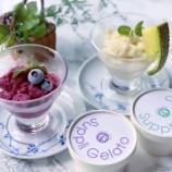 『【ジェラート】食べることで健康や美容をサポートできるジェラートブランド「Karadaneeds」』の画像