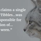 『ティブルズ』の画像