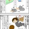 ふん…おもしれー猫。
