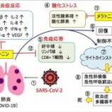 『2020.4.29 小早川 智氏特集 -【新型コロナ治療方法】①緑茶、お味噌、蜂蜜ヨーグルトが三種の神器…/安倍晋三は最大の大失敗を…日本にタックスヘブンを密かに作ってました… 他2件』の画像