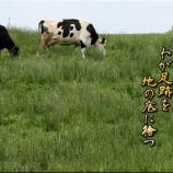 『草刈り三昧(草刈り時の注意点)』の画像
