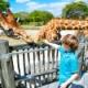 動物園飼育員だけどなんか質問ある?