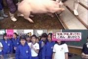 ワイ子豚、今日も小学生を笑顔にさせる