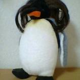 『ヅラペンギン』の画像
