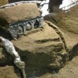 「驚異的な発見」と専門家 ポンペイ遺跡近くで「ほぼ無傷の」馬車が発掘される