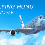 『【ANAトラベラーズ】ANA FLYING HONUチャーターフライト ===8月22日成田発着のフライングホヌ90分間遊覧飛行の参加者募集中!===』の画像