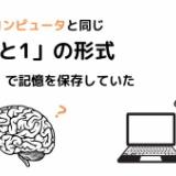 人間の脳、有機スーパーコンピュータだった 「0と1」で記憶を保存すると明らかに