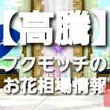 『【高騰】プクモッチのお花相場情報2/5』の画像