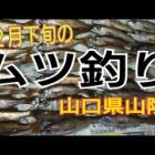 『山陰ムツ釣り(YouTube)』の画像