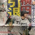 【悲報】阪神横田、現役引退