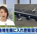 金塊を小さく加工、腸の中に隠して密輸を図る 韓国籍のツアー客の女7人、税関が処分を検討…中部空港