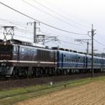 TrainPhotoNews