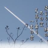 『フォト短歌「天に舞う」』の画像