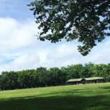 『夏休みは公園で飛行機鑑賞』の画像