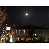 『月の光に照らされて』の画像