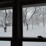『冬 春』の画像