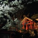 『新年初詣にて雅楽の生演奏があります』の画像