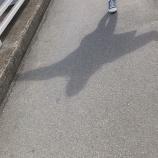 『【乃木坂46】なんと初!?『本日は、美脚美人の撮影でした・・・』』の画像
