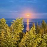『中秋の名月』の画像