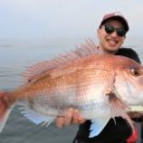 『6月 6日 釣果 スーパーライトジギング マダイ19匹 荒れ後の仙台湾は釣れます!!』の画像