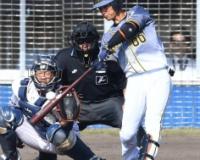 【朗報】上本博紀さん、現役セカンドではトップクラスの強打者だった