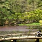 『神戸の森林公園に。』の画像