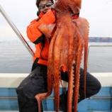 『3月13日 釣果 スロージギング 沖アイナメと立派なミズダコ!!』の画像