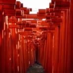 何度でも訪れたい日本の風景