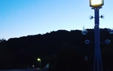 『第43回全国少年剣道優勝大会 第39回神武館旗争奪少年剣道個人選手権大会』の画像