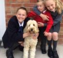 ドラム式乾燥機に閉じ込められたダウン症の子ども それに気付いた犬が家族に知らせ無事救助