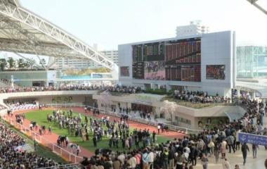 『3/31(日)大坂杯 ・ 特別レース 予想見解』の画像