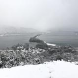 『雪降る朝に』の画像