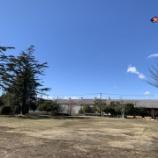 『【横浜】凧揚げにチャレンジ!』の画像