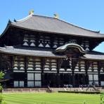 Magical Mystery Nara Tour