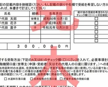 10万円給付申請の「希望しない」にチェックした場合、修正できるのか総務省に質問した結果・・・