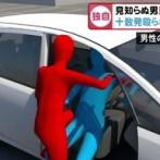 【愛知】 車降りたら突然十数発殴られ全身アザだらけに…80歳男「睨みつけられたと思った」