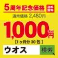 2017 カミカゼ ニュースまとめ