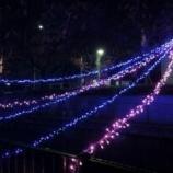 『明日12時半から戸田市後谷公園で音楽コンサート、16時半から笹目6丁目下町公園でさくら川イルミネーション点灯式が開催されます』の画像