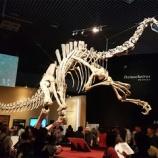 『上野恐竜博に行ってきました』の画像