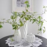 『高見え雑貨! ダイソーの北欧風花瓶で緑をおしゃれに飾る!!』の画像