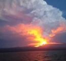 ガラパゴス諸島のウォルフ火山で噴火、ピンクイグアナが周辺に生息